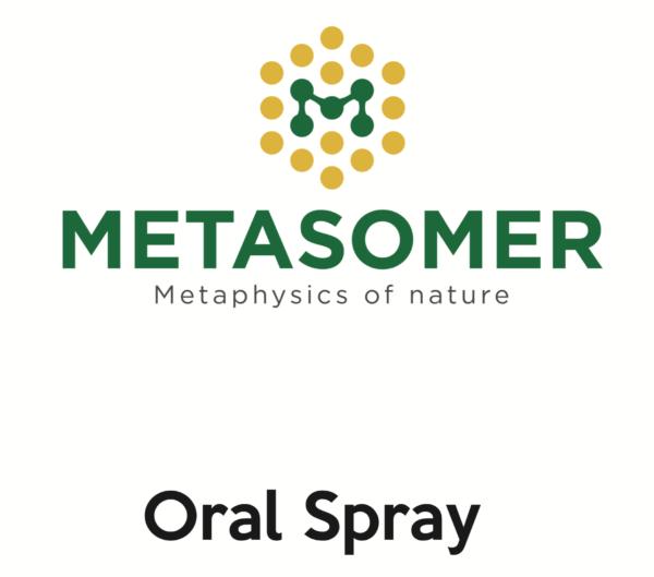 Metasomer